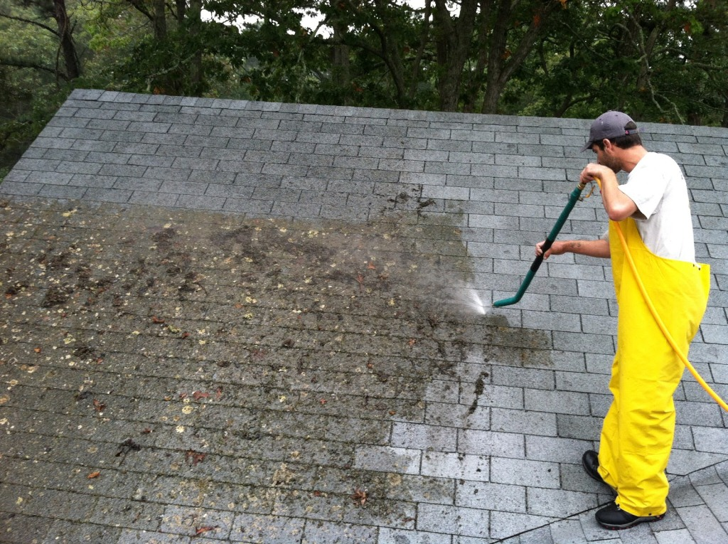 What Is The Process Of Removing Moss From A Roof Roundhay Roofing